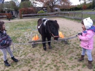 weerbaarheidstraining - pony power voor kids training |Discover Coaching Maastricht