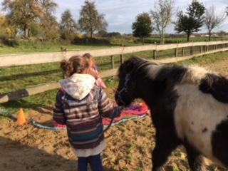 weerbaarheidstraining voor kinderen - pony power voor kids training |Discover Coaching Limburg Maastricht
