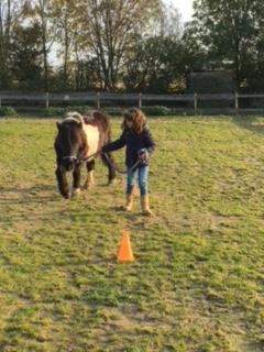 weerbaarheidstraining kinderen - Paardencoaching Limburg met kinderen- Pony power voor kids | Discover-Coaching