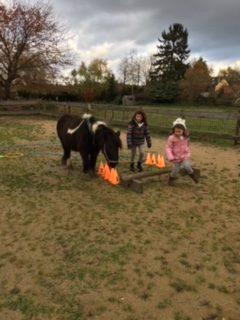 weerbaarheidstraining voor kinderen - pony power voor kids spelvorm | Discover Coaching Maastricht
